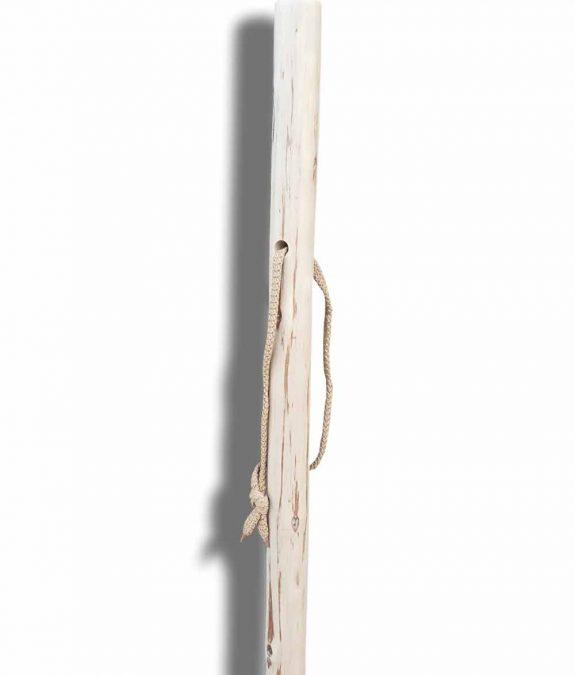 walking sticks-14-1000
